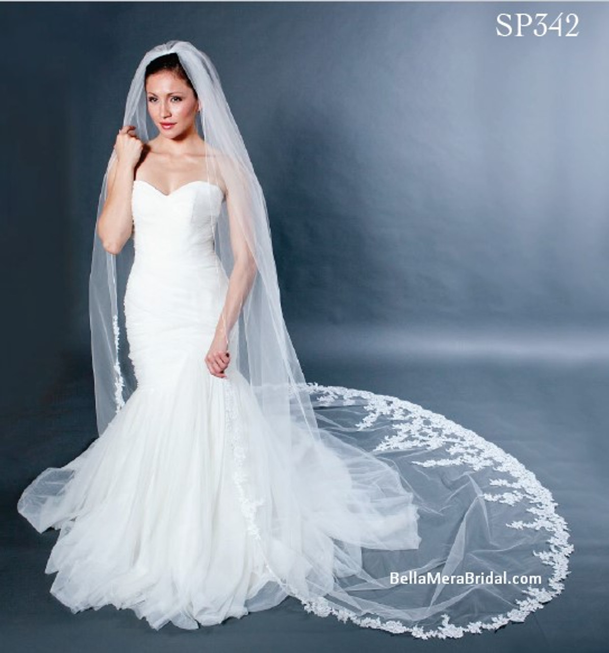 """Giselle Bridal Veil Style SP342 - Clear Beaded Lace - 120"""" Long"""
