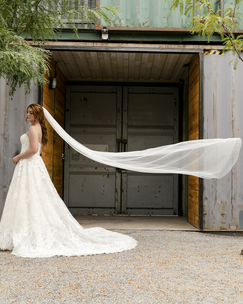 En Vogue Bridal Style V2294C - English Luxe Cathedral Lace Veil - 108 Inches