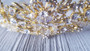 Bella Mera Studio -Crystal Tiara - Pearls And Rhinestone Encrusted Leaves