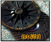 """Zec Litex Silicon Carbide 4-1/2"""" x 7/8"""" 25 pc Box. These are the finest disc made!! and require no backup pad."""