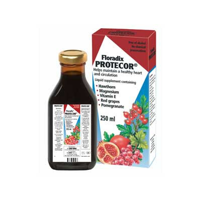 Floradix Protector 250ml