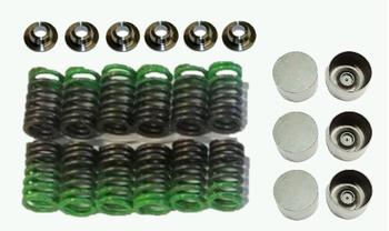 TD HD High RPM valve train kit ( Custom buckets + STG6 valve springs and retainers)