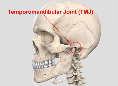 tmj-joint.jpg