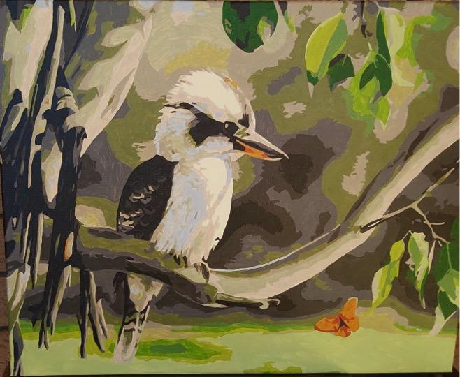 Paint by Numbers - Aussie Kookaburra by Joan M