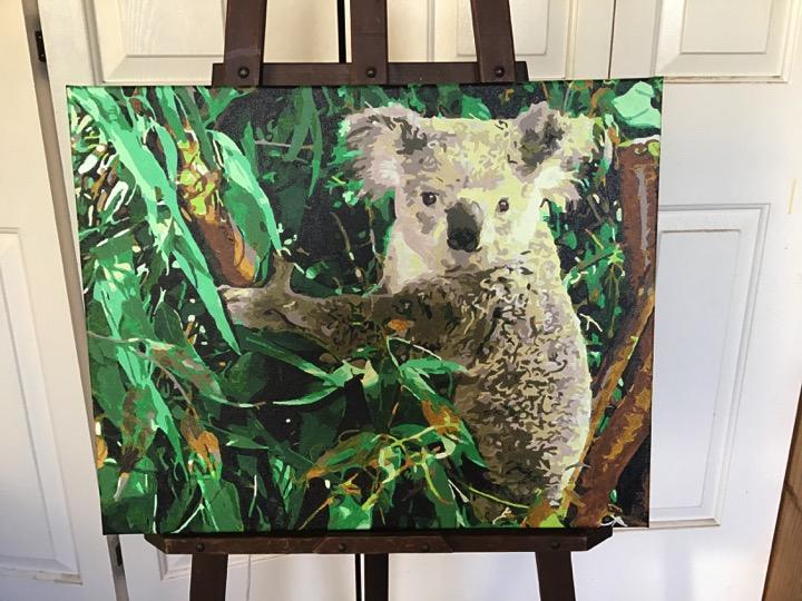 Paint by Numbers - Koala by Sandra Joyce