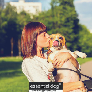 Guide to Dog Skincare: Choosing a Suitable Dog Shampoo for Itchy Skin