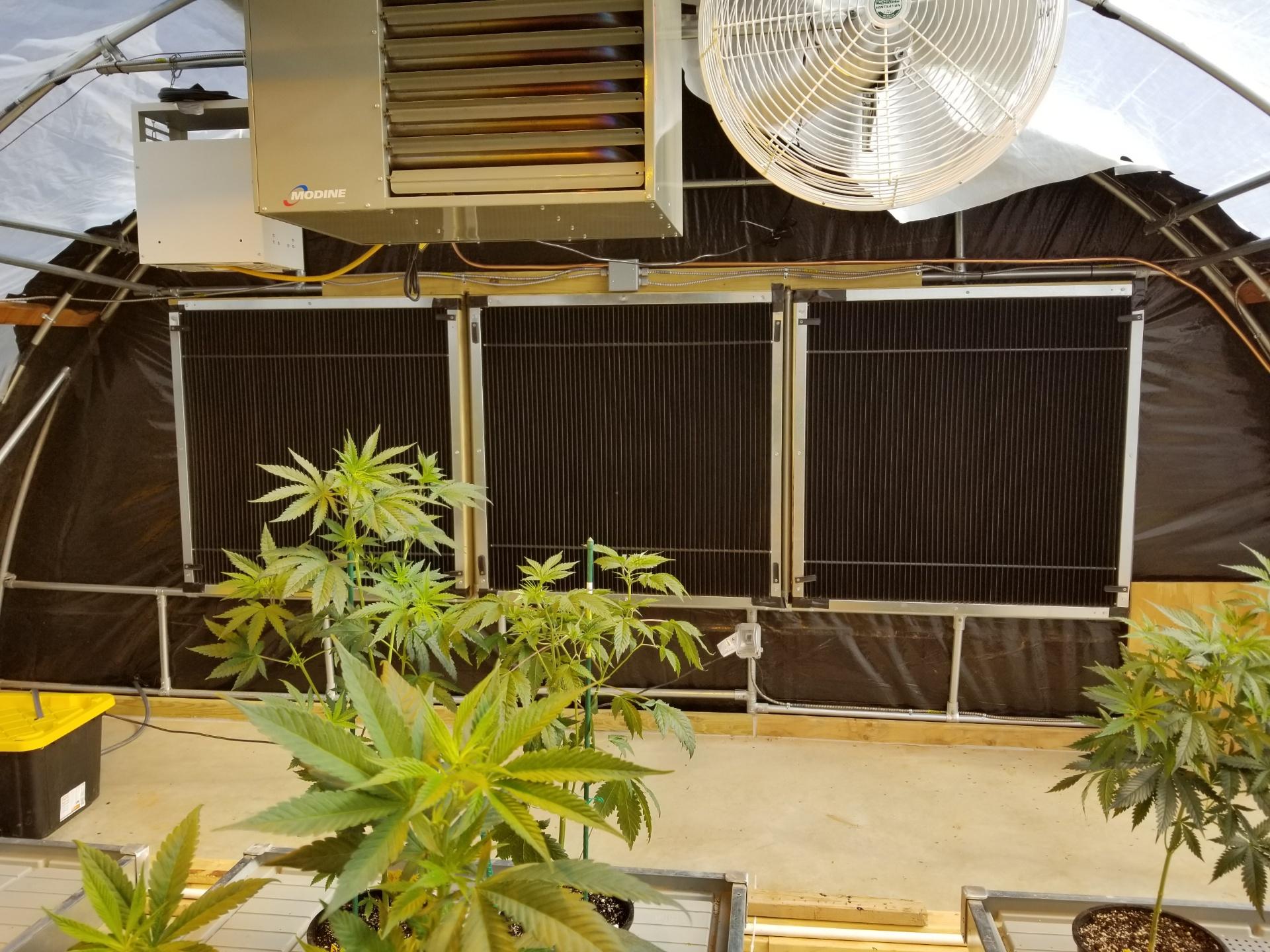greenhouse-j-d-light-trap-intakes1-factory-fans-direct-888-849-1233.jpeg