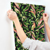 York Wallcoverings TC2651 Tropical Love Birds Wallpaper,Black / Green / Peach/ Red Prepasted Surestrip 27 In wide x 27 ft long 60.8 Sq Ft Designer Quality