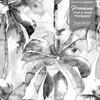 GW2202 Grace & Gardenia Watercolor Palms Peel and Stick Wallpaper Roll 20.5 inch Wide x 18 ft. Long, Gray