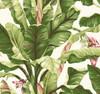 York Wallcoverings AT7067 Tropics Banana Leaf Wallpaper, White, Lit Yellow/Green