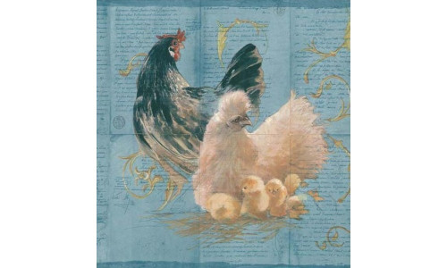 St. James / York EU4777B Hens Rooster Wallpaper Border, Blue