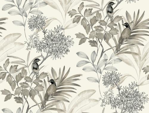 York Handpainted Songbird Wallpaper Gray TL1927 Handpainted Traditionals