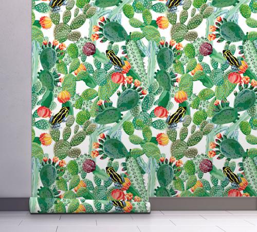 GP1900221 Cactus and Frog Wallpaper
