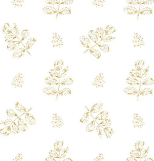 GN5012 Hand Drawn Leaves Fine Wallpaper Roll size 26 inch Wide x 27ft. Long, Mustard, White
