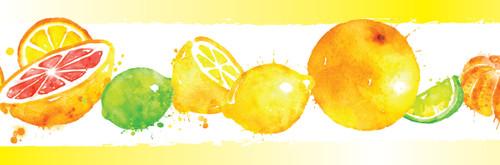 GB50111 Grace & Gardenia Citrus Splash Peel and Stick Wallpaper Border 10in Height x 18ft Yellow Orange Green