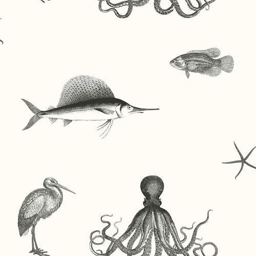 Chesapeake by Brewster 3113-12012 Seaside Living Oceania Black Sea Creature Wallpaper