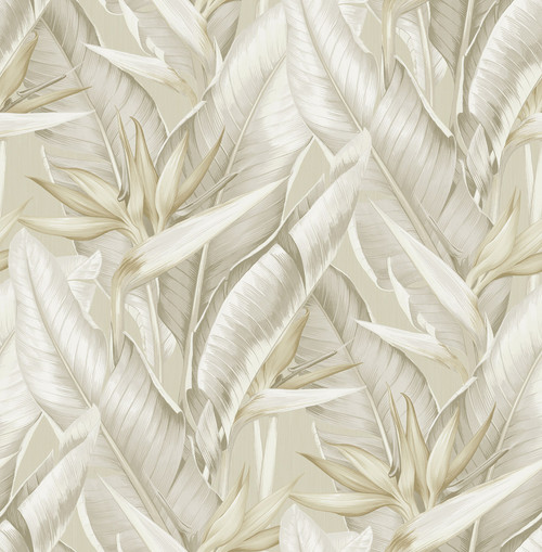Kenneth James by Brewster PS40205 Palm Springs Arcadia Beige Banana Leaf Wallpaper