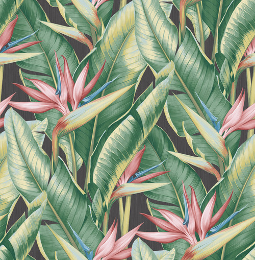 Kenneth James by Brewster PS40201 Palm Springs Arcadia Pink Banana Leaf Wallpaper