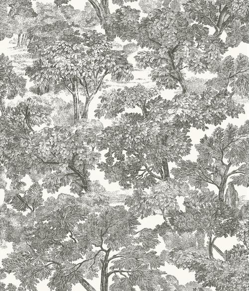 Chesapeake by Brewster 3115-12542 Spinney Black Toile Wallpaper