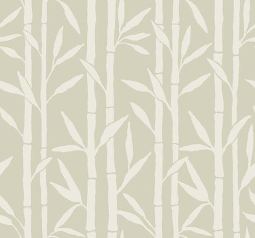 York Wallcoverings OG0605 Antonina Vella Elegant Earth Bamboo Grove Wallpaper Beige