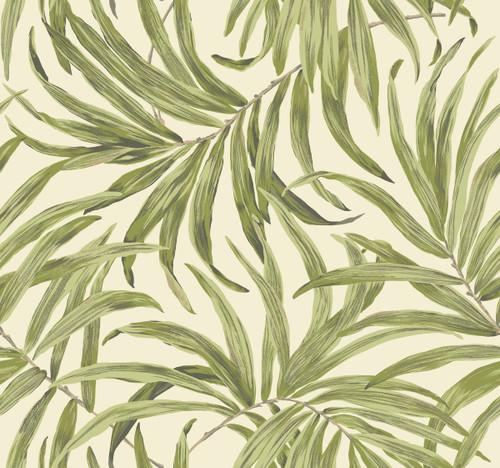 York AT7051 Tropics Bali Leaves Wallpaper cream, light to medium yellow/green, dark grey