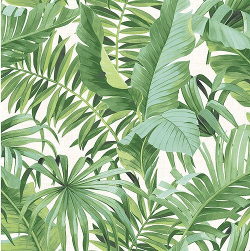 A-Street Prints 2744-24136 Alfresco green Palm Leaf Wallpaper