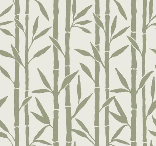 York Wallcoverings OG0608 Antonina Vella Elegant Earth Bamboo Grove Wallpaper Green