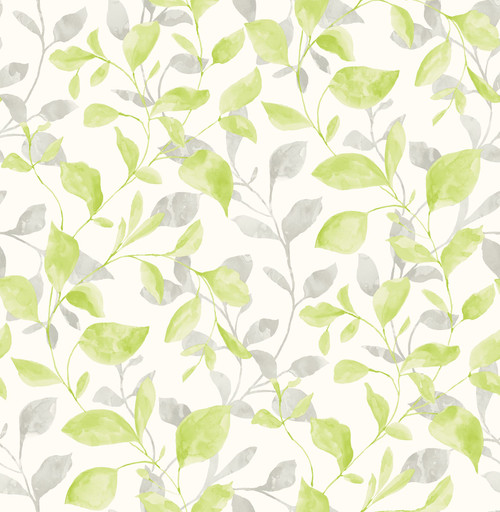 A-Street Prints by Brewster 2656-004036 Catalina Trail Green Vine Wallpaper