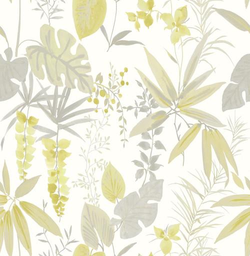A-Street Prints by Brewster 2656-004017 Descano Flower Golden Green Botanical Wallpaper