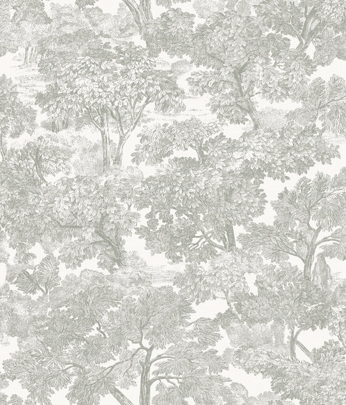 Chesapeake by Brewster 3115-12541 Spinney Grey Toile Wallpaper