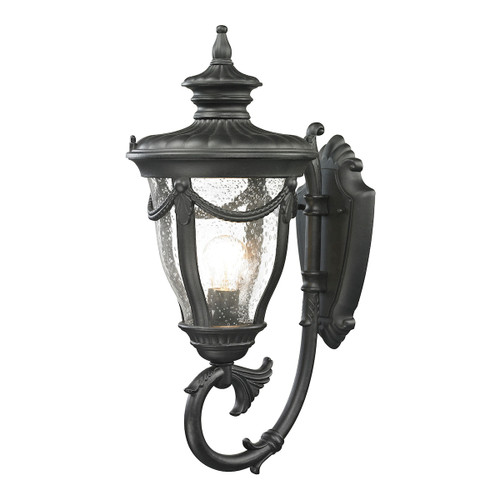 Anise 1 Light Outdoor Sconce In Textured Matte Black by Elk 45076/1
