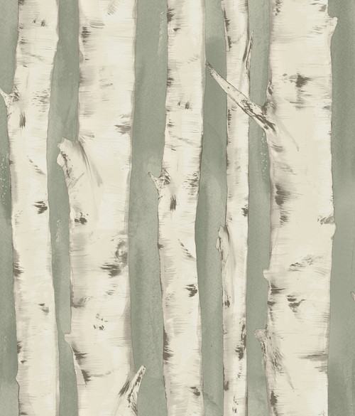 Chesapeake by Brewster 3118-12603 Birch & Sparrow Pioneer Sage Birch Tree Wallpaper