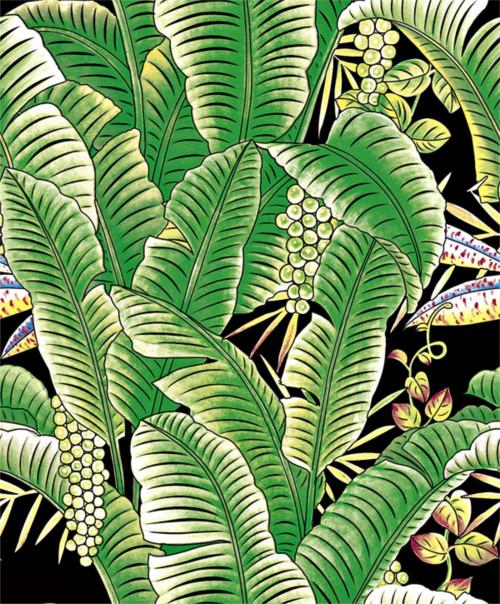 Tropical Banana Leaf  Black and Green Wallpaper by Grace & Gardenia G63152