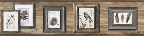 YorkLG1371BDRustic Living Wallpaper Collection,Aviary Border - Dark Grey