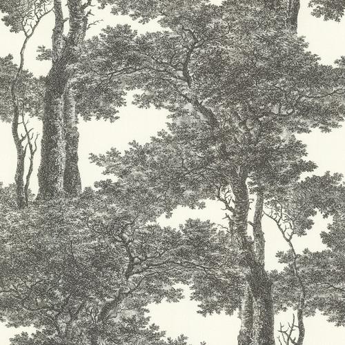 Brewster Advantage Neutral / Black / White 2773-605419 Scout Black Forest Wallpaper