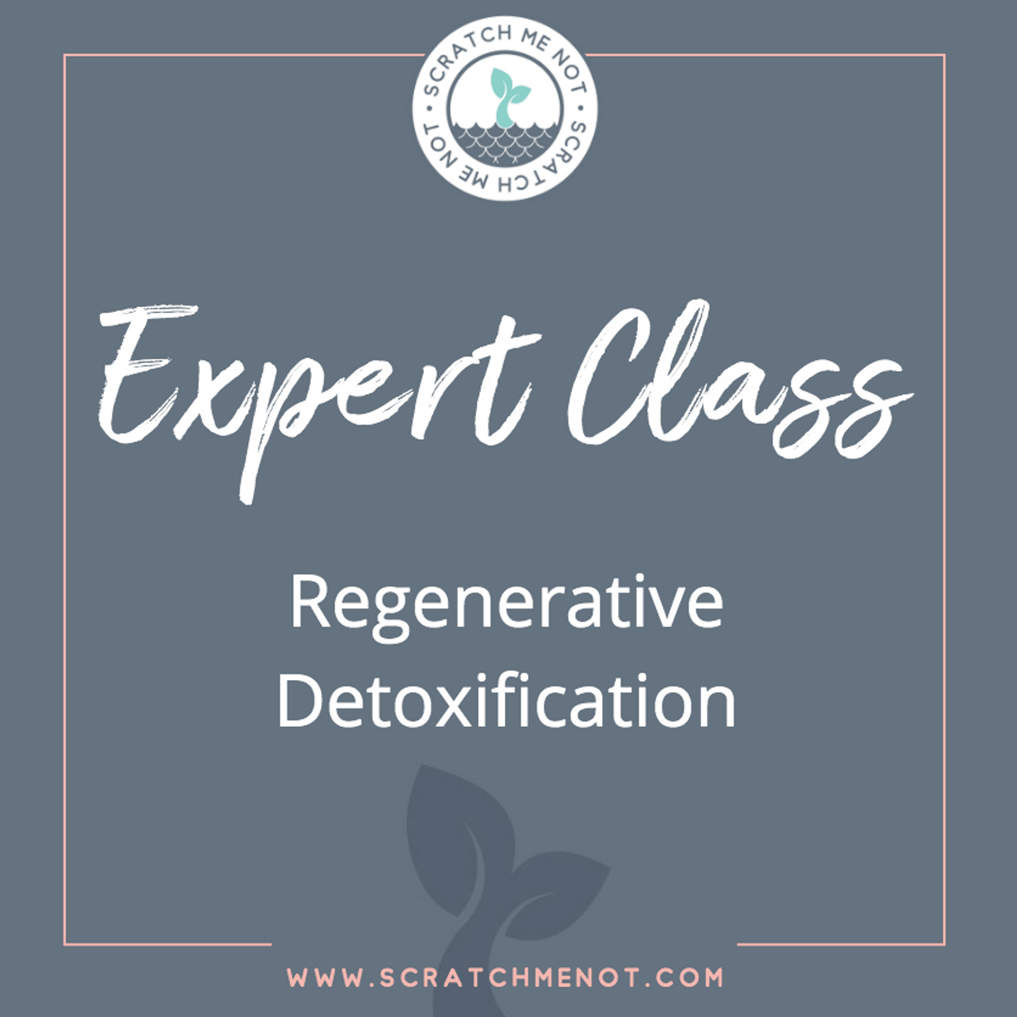 Regenerative Detoxification - How to start and how do you know it's working