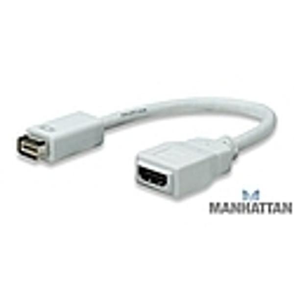 30850 MANHATTAN MINI DVI TO HDMI CABLE
