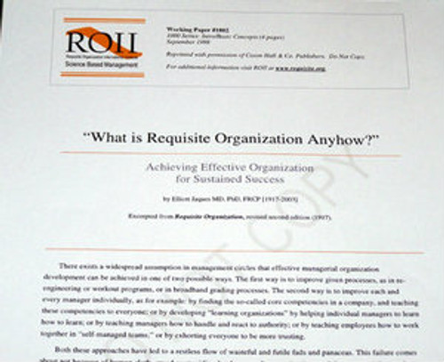 # 1002 Working Paper - Achieving Effective Organization for Sustained Success