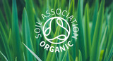 Why the organic beauty & wellness market is booming!