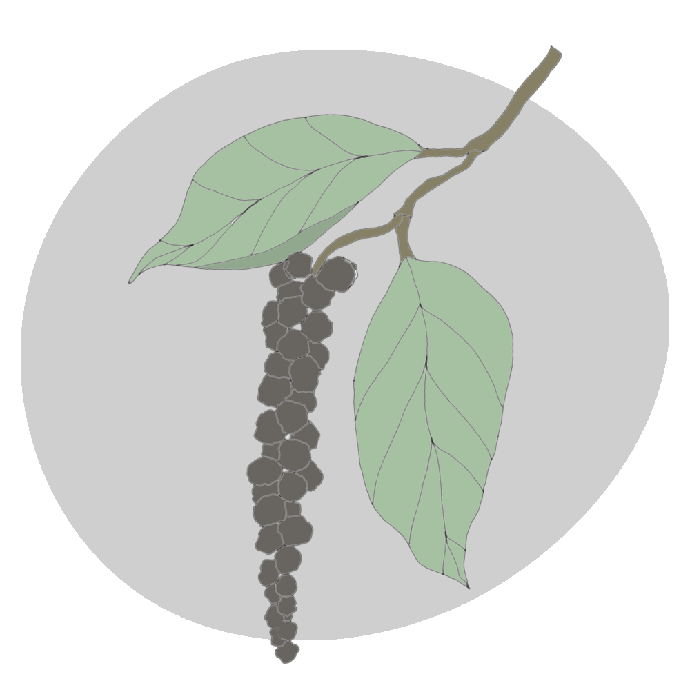 black-pepper.png