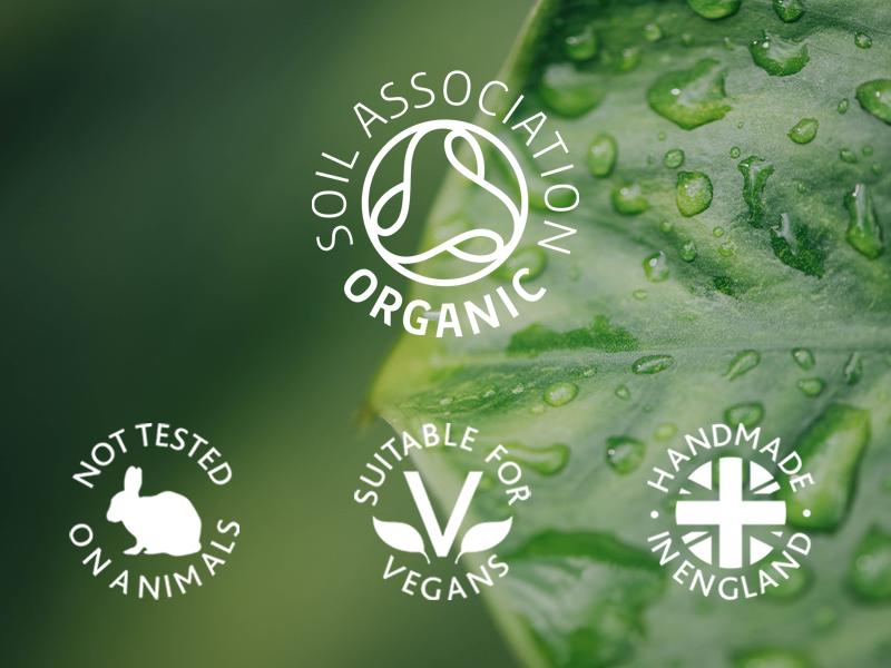 clean-green-nocircles.jpg