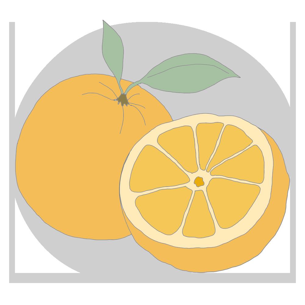 mandarin.png
