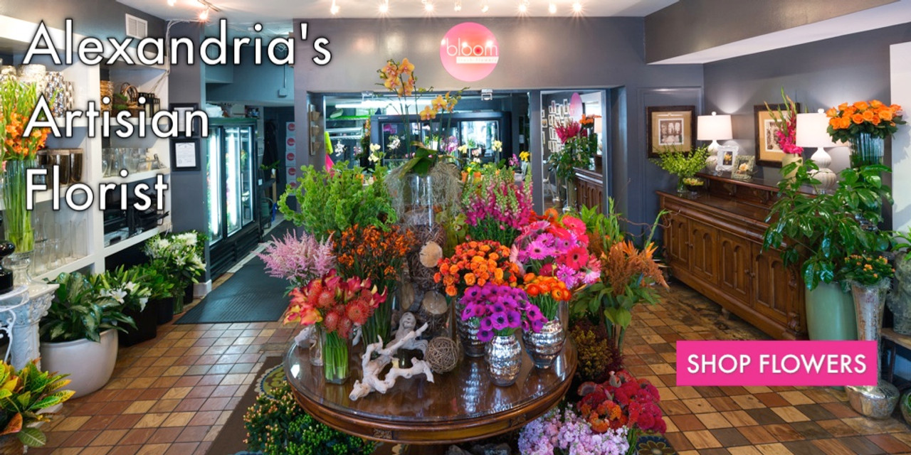 flower shops in alexandria mn