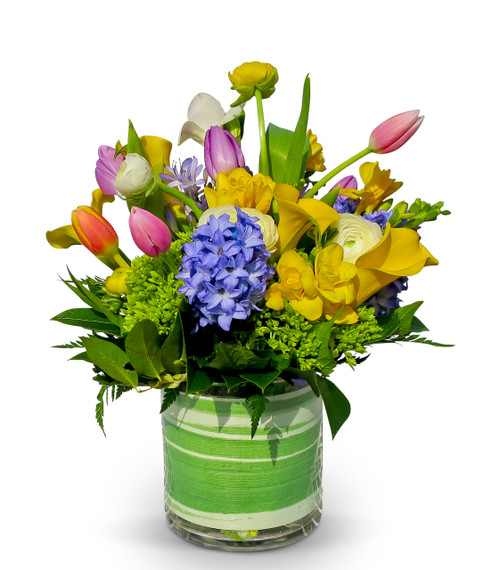 Alexandria's Artisan Florisit bouquet with green hydrangea, yellow freesia, calla lilies, white ranunculus, multi-color tulips and fragrant blue hyacinth.