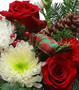 Fresh Pick of the Day - Christmas