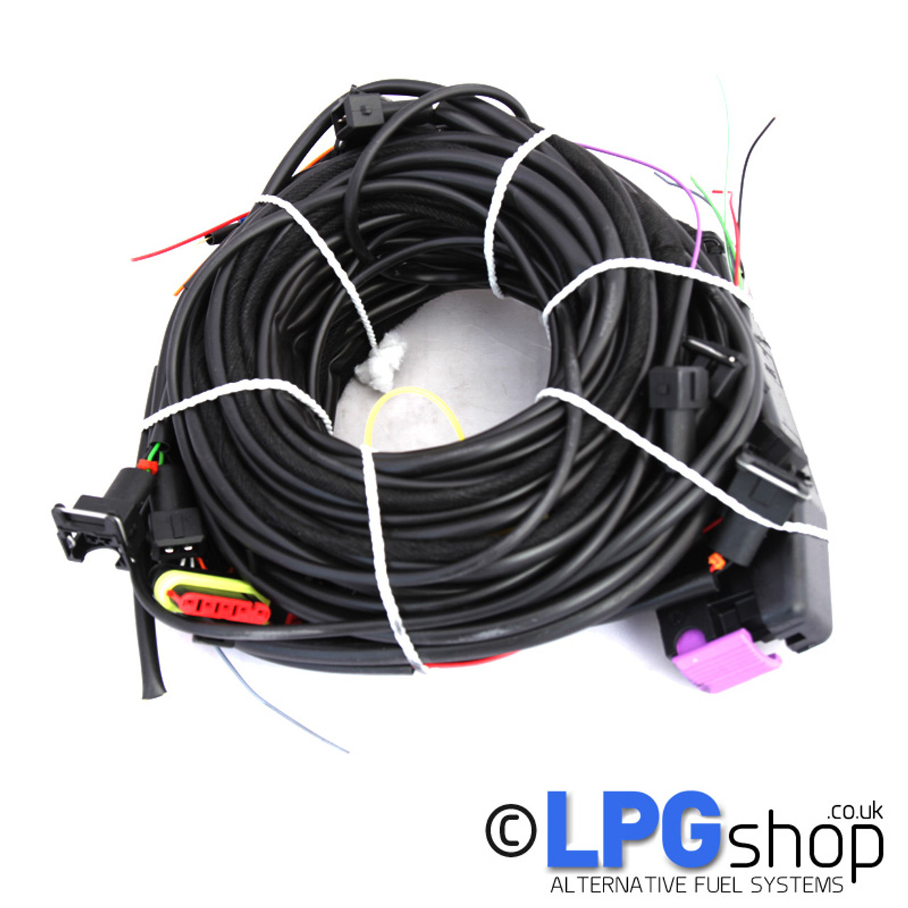 Ecu Wiring Harness   Wiring Library