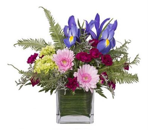 Uptown Blooms Arrangement (koehler)