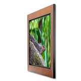 Metal Print with Tahiti Wood Frame, angled side view. Wildlife photography by Teresa Lutz.