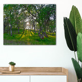 Metal print with silver Floating Frame made of brushed anodized aluminum, superimposed in bedroom above dresser. Landscape photography by Nick Orpin-Wilkes.