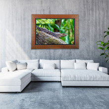 Metal Print with Tahiti Wood Frame. Artwork hung in a large lobby. Wildlife photography by Teresa Lutz.